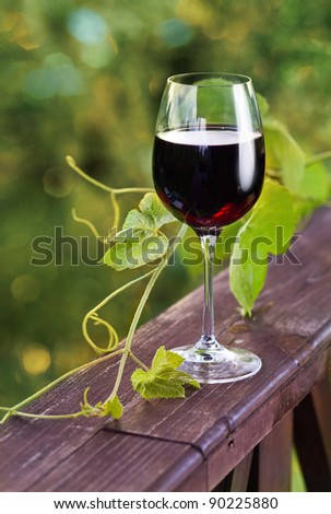glass with red wine in vineyard.