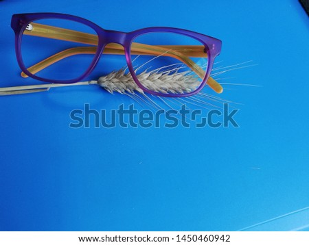 glasses for the sight on a light blue background with wheat stalks Modern eyeglasses with progressive lenses #1450460942