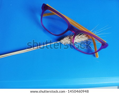 glasses for the sight on a light blue background with wheat stalks Modern eyeglasses with progressive lenses #1450460948