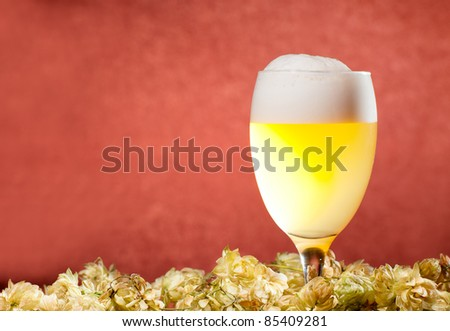 Glasses of beer with hop over red