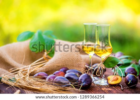 Glasses of fine spirits served in the garden in summer on a rustic wood table #1289366254