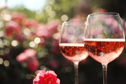 Glasses of rose champagne in blooming garden, closeup. Space for text