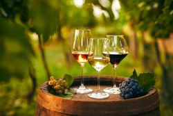 Glasses of white, pink and red wine on an old wooden barrel in the vineyard