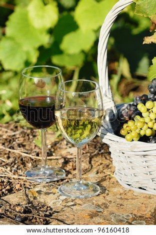 glasses of wine and grappes in basket