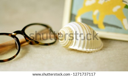 Glasses, scallop and picture in composition on a light background