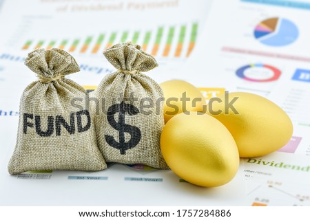 Global equity income fund / capital growth, financial concept : Bags of fund, US USD dollar and golden eggs on a company summary report, depicts long-term investment for sustainable recurring earnings