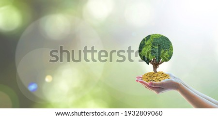 Global sustainable investment fund with environment, social, governance (ESG) in clean industry and CSR policy concept with volunteer hands holding world green tree growing on money capital wealth