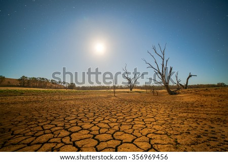 Global warming concept. dead tree under hot sunset,  drought cracked desert landscape Сток-фото ©