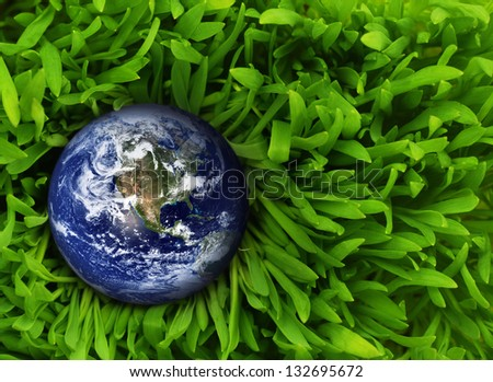 Globe in fresh green grass. Elements of this image furnished by NASA - stock photo