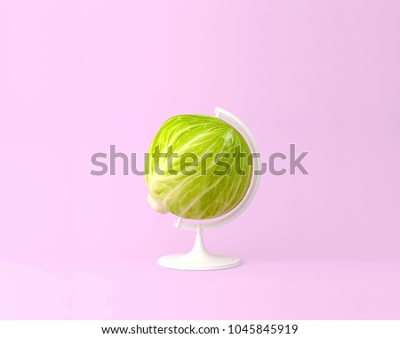 Globe sphere orb green cabbage concepts on pastel pink background. minimal idea food and fruit concept. An idea creative to produce work within an advertising marketing communications , artwork design