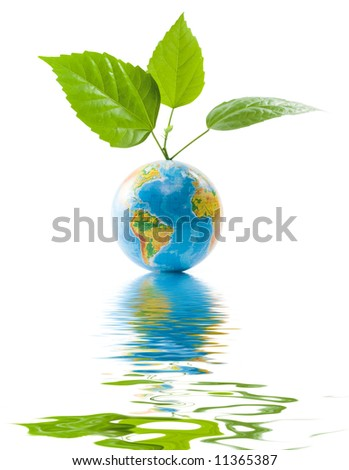 Globe with leaves isolated on a white background. Clipping path included. Concept for environment conservations.