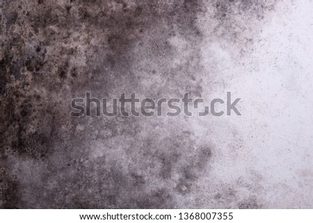 Gloomy grungy background with mold #1368007355
