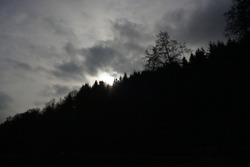 Gloomy landscapes with dark trees photographed on a murky stormy winter afternoon in Germany