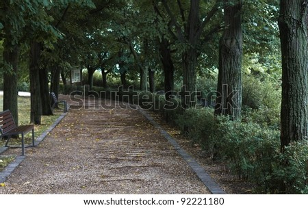 Gloomy path surrounded by trees wooden benches, with limited depth of field.