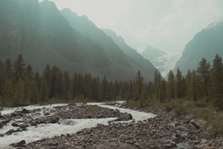 Gloomy photo of nature. A gray river is surrounded by gloomy coniferous forest. Get lost in the mountains. Shadow Forest. Misty mountain valley with snowy peaks. Frightening twilight in the mountains.