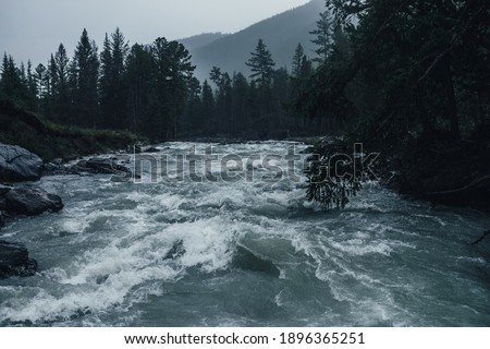 Photo of  Gloomy rainy landscape with powerful mountain river in heavy rain. Dark atmospheric view to turbulent rapids in rainfall. Mountain creek in dark forest in downpour. Powerful mountain river in rain.