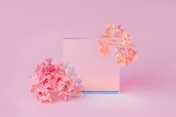 Gloss acrylic plates with flowers on a pink background.  Stylish background for presentation.