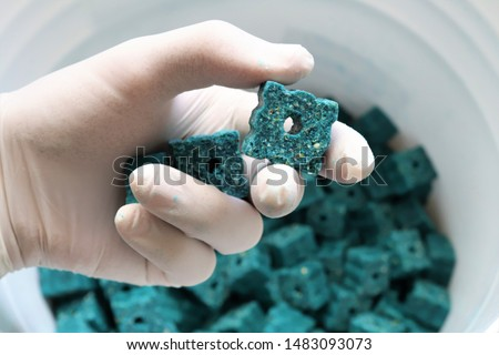 Photo of  Gloved hand holding blue rodent poison.These dry poison blocks can be placed in areas where rodents such as rats and mice are active.After the rodents feed on these baits they will be eliminated.
