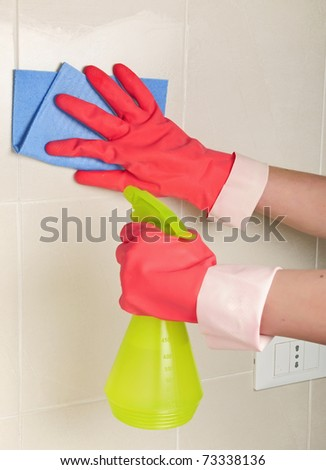 gloves and sprayer for the household chores