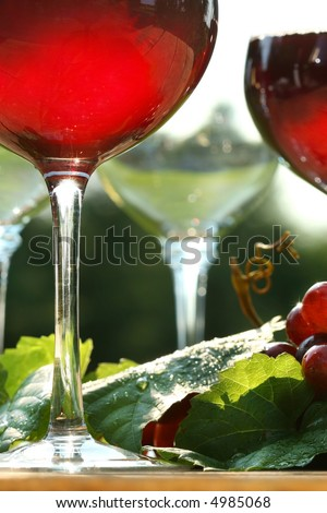 Glow of red wine in the sun