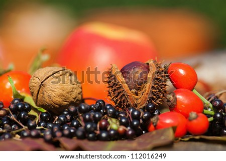 glowing autumn fruits