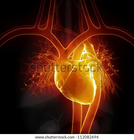 Glowing heart with internal organs     **** Also as footage available in my portfolio