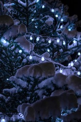 Glowing lights on the garland on branches Christmas tree with snow. Holiday garlands on snowy branches. Snow-covered tree decorations background. String lights hang and glow outdoors at winter night.