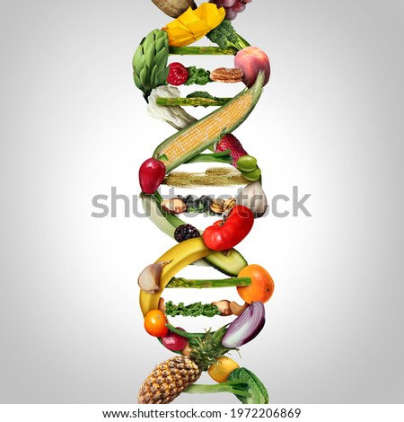 GMO food and Genetically modified crops or engineered agriculture concepts fruit and vegetables as a DNA strand symbol with 3D illustration elements. Stock photo ©