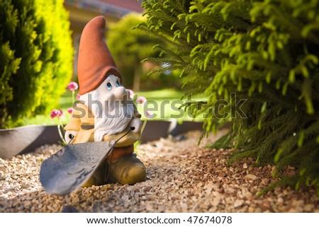 Gnome in a garden