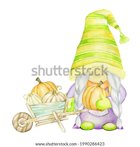 Gnome, wooden, wheelbarrow, pumpkins. Watercolor concept, on an isolated background, in a cartoon style.