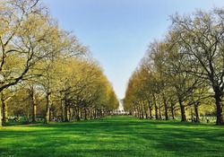 Go 'till the end, the road is long, but the price is gorgeous - Green Park - London
