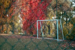 Goal post with nets in a turf football/soccer field in an autumn scene with red and yellow trees around. Selective focus on goal post.