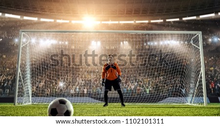 Goalkeeper is waiting to catch a ball from a penalty kick on a professional soccer stadium. Stadium and crowd is made in 3D.