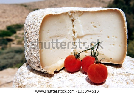 Goat cheese  with cherry tomatoes on display in the desert landscape.