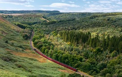 Goathland, Yorkshire, UK. Vintage steam train cuts through woodland in the North York Moors national park between Goathland, and Pickering in summer near Levisham, Yorkshire, UK.