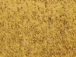 Gold background facade plaster . Monolithic plaster decorative backdrop. Single layer scraped cement plaster wallpaper. Concrete exterior building structure backdrop. Silica sand cement wall plaster