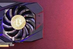 Gold Bitcoin coin on a Black video Card with red and blue backlight, a fan. Crypto currency. Bitcoin mining concept, copy space