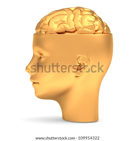 Gold brain in gold head is opened