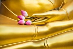 gold Buddha hand with pink lotus