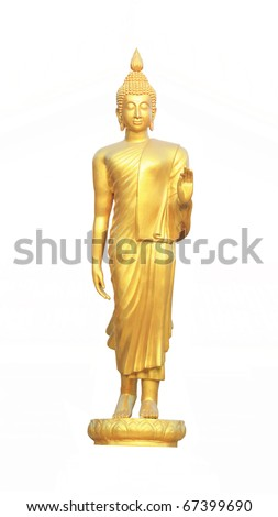 gold buddha standing on white background