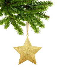 Gold Christmas star on new year tree green branch isolated on white background
