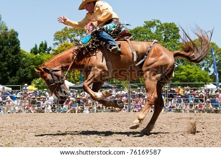 GOLD COAST, AUSTRALIA - JANUARY 26: Unidentified cowboy rides wild horse on January 26,2011 in Gold Coast, Queensland, Australia. The rodeo show was part of Australia Day celebration.