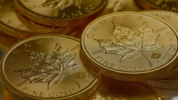 gold coin of canada background