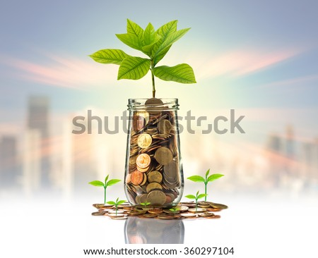 Gold coins and seed in clear bottle on photo blurred cityscape background,Business investment growth concept