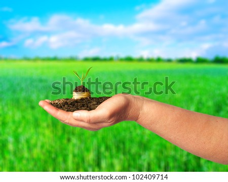 Gold coins with young plant in arm over nature background. Financial metaphor.