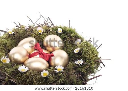 Gold easter eggs in bird nest isolated over white background