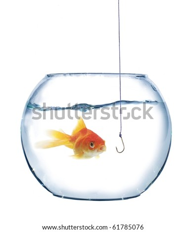 gold fish and empty hook on white background