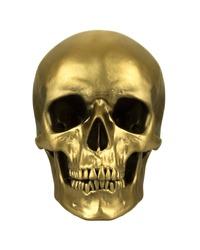 Gold human skull, isolated on white background