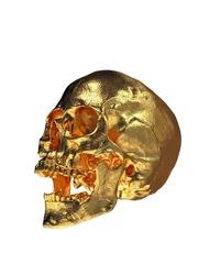 Gold Human Skull Isolated on White Background