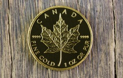 gold maple on wood